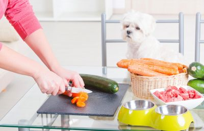 What Type Of Nutrition Should You Add To Your Dog Food?